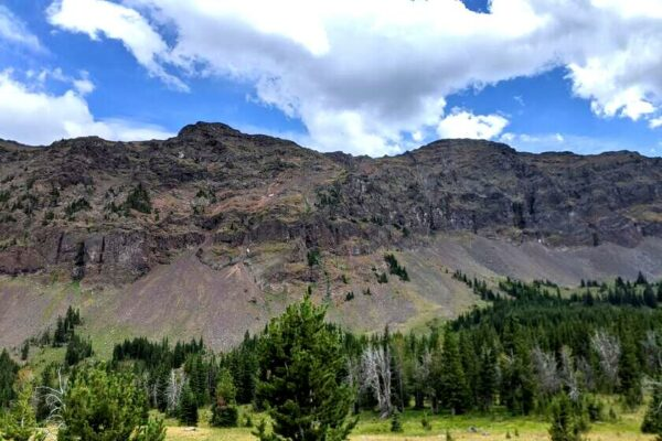 things to do in livingston mt